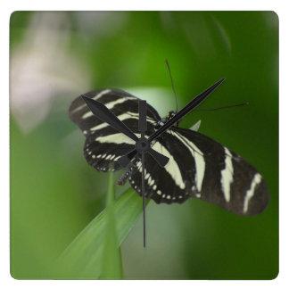 Butterfly Perfection Wallclocks