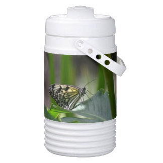 Butterfly Perfection Igloo Beverage Cooler