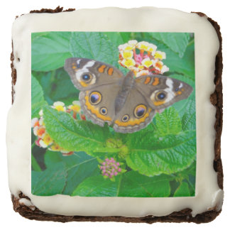 Butterfly Photo Brownies
