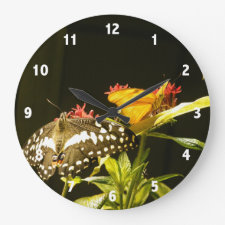 Butterfly Photo Clock