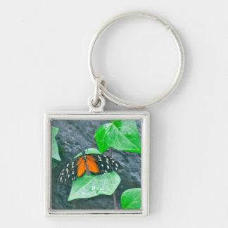 BUTTERFLY (PHOTO) KEYCHAIN