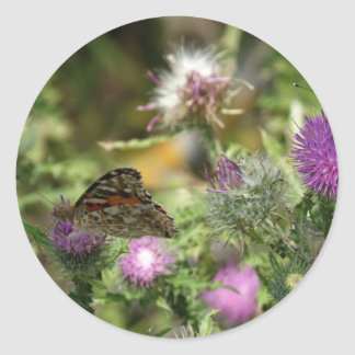 Butterfly Photo Round Sticker, Glossy Classic Round Sticker