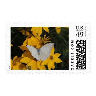 Butterfly photo stamp