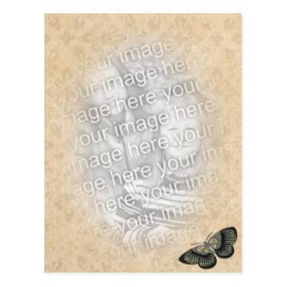 butterfly photo template postcard