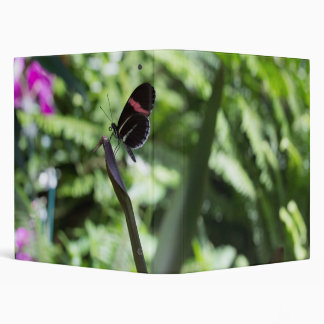 Butterfly Photography Binder