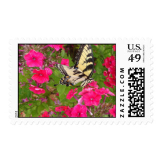 Butterfly Pink Flowers Photography Postage Stamp
