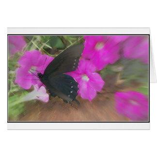 butterfly pink pet card