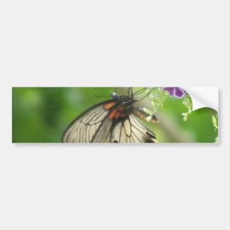 Butterfly Pollinating Bumper Sticker Car Bumper Sticker