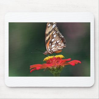 Butterfly pollinating flower mouse pads