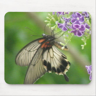 Butterfly Pollinating Mouse Pad
