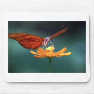 Butterfly pollinating yellow flower mouse pad