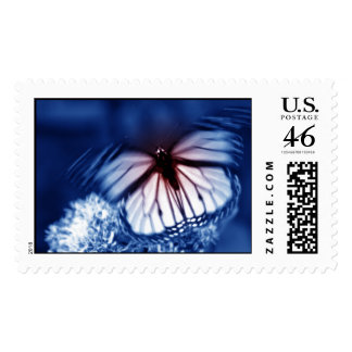 Butterfly Postage Stamp