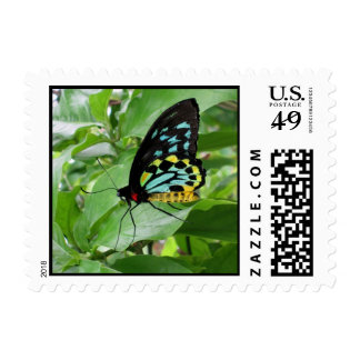 Butterfly! Postage Stamps