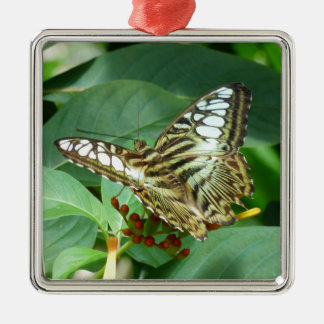 Butterfly Premium Square Ornament