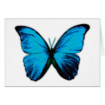 Butterfly Print Greeting Card