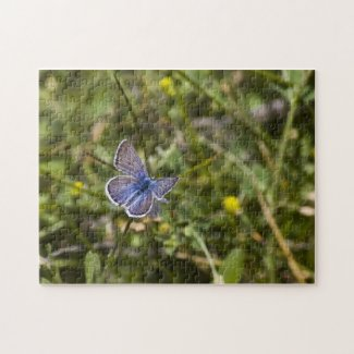 Butterfly Puzzle 3 puzzle
