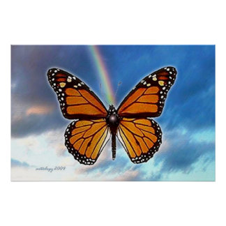 Butterfly Rainbow Poster