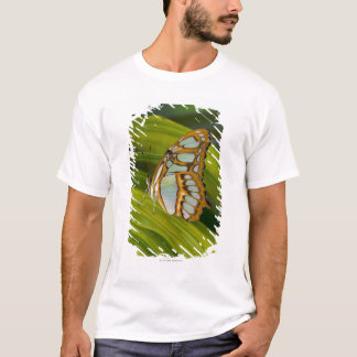 Butterfly resting on leaf T-Shirt
