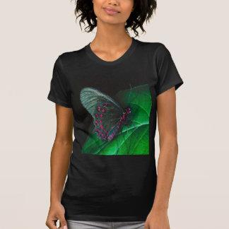 Butterfly-resting, teofert-shirt t-shirt
