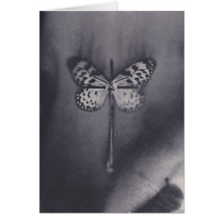butterfly resurection greeting card