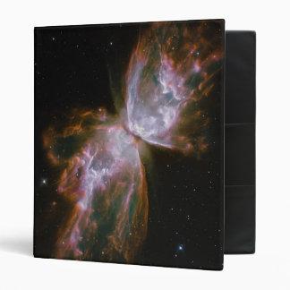 Butterfly Shaped Planetary Nebula Binders
