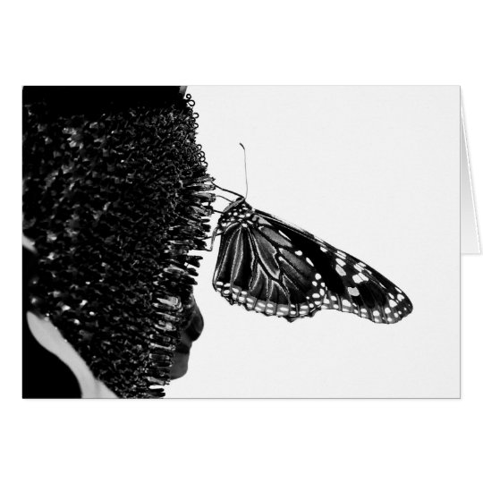 butterfly shy blacq card
