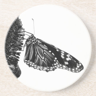 butterfly shy blacq drink coaster