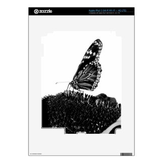butterfly shy blacq decals for iPad 3