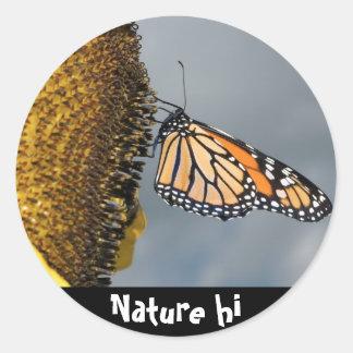 butterfly shy classic round sticker