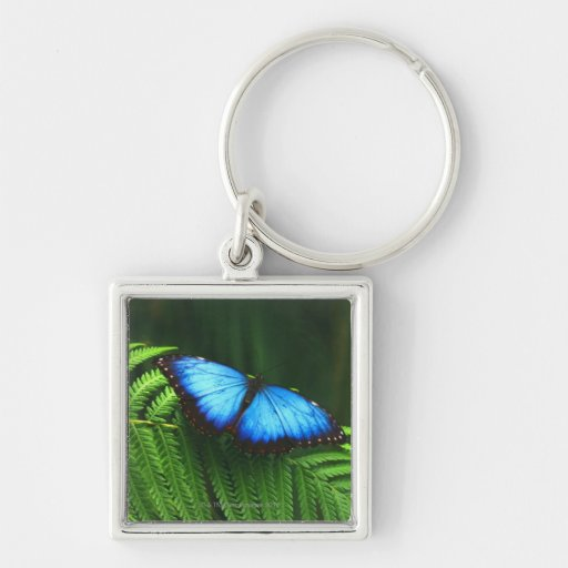 butterfly Silver-Colored square keychain