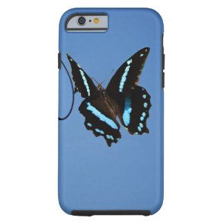 Butterfly simplicity tough iPhone 6 case