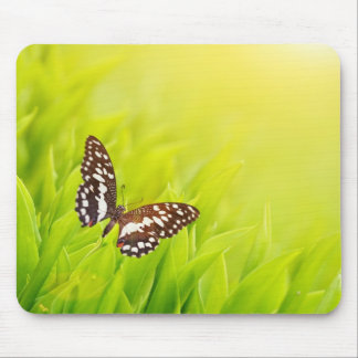 Butterfly sitting on a fresh green grass mouse pads