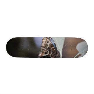 Butterfly Skate Boards