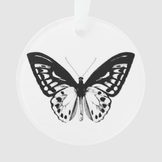 Butterfly sketch, black and white