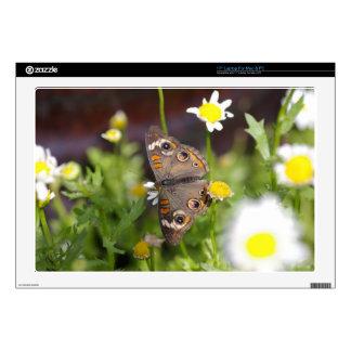 Butterfly Skin For Laptop