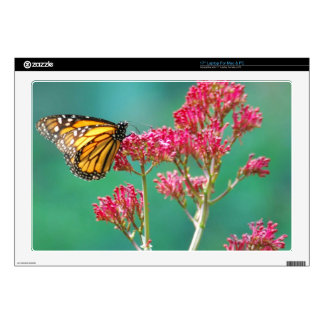 Butterfly Skins For Laptops