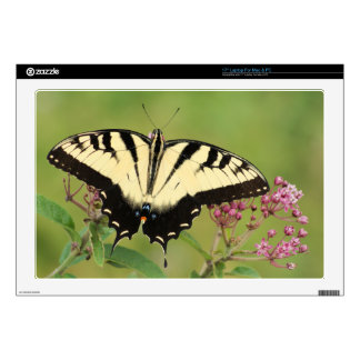 """Butterfly Decals For 17"""" Laptops"""
