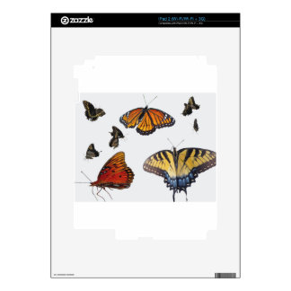 Butterfly Skin For iPad 2