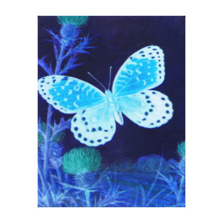 Butterfly - Sky blue, Midnight blue Canvas Prints