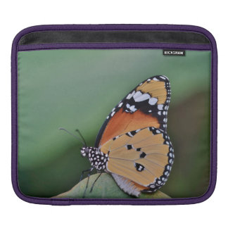 butterfly sleeve for iPads