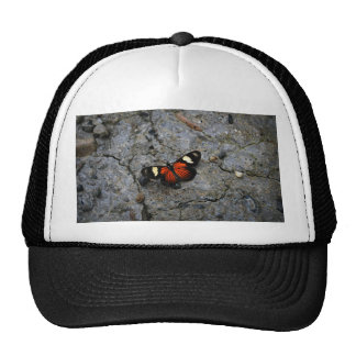 Butterfly Solitaire on Stone Trucker Hat