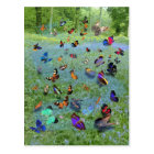 Butterfly Song of Cherokee Legend Postcard