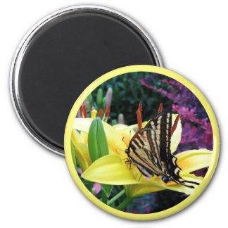 Butterfly Spring Magnet