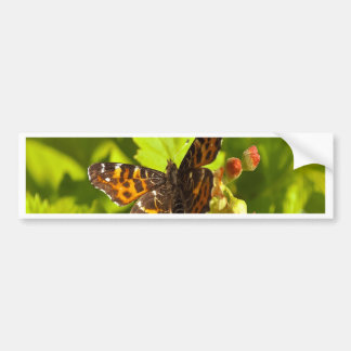 Butterfly summer beauty and peace bumper sticker