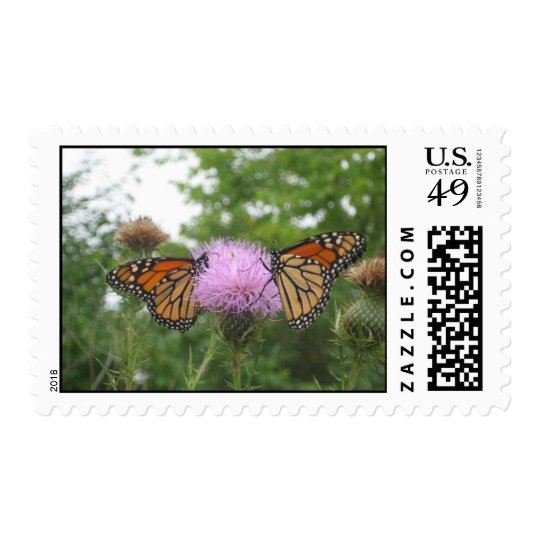 Butterfly Summer Postage