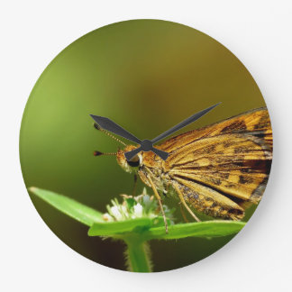 Butterfly Tamil Grass Dart with Bokeh Background Wallclocks