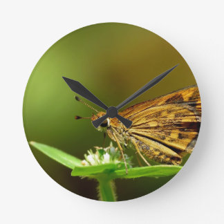 Butterfly Tamil Grass Dart with Bokeh Background Round Clocks