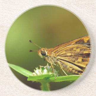 Butterfly Tamil Grass Dart with Bokeh Background Coaster