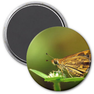 Butterfly Tamil Grass Dart with Bokeh Background Refrigerator Magnets