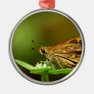 Butterfly Tamil Grass Dart with Bokeh Background Ornaments